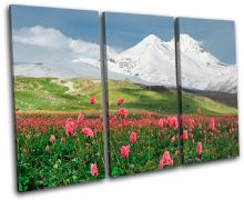 Floral Mountains Landscapes - 13-2218(00B)-TR32-LO